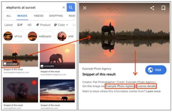 Google Search Console начал поддерживать микроразметку для лицензируемых изображений